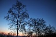 澄みきる夕焼け空